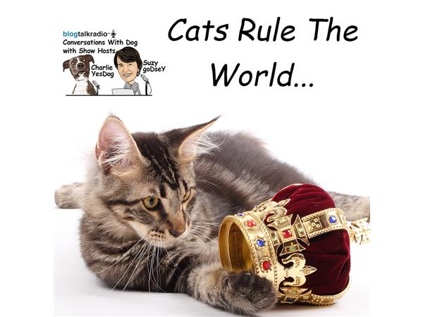 Do Cats Rule the World?